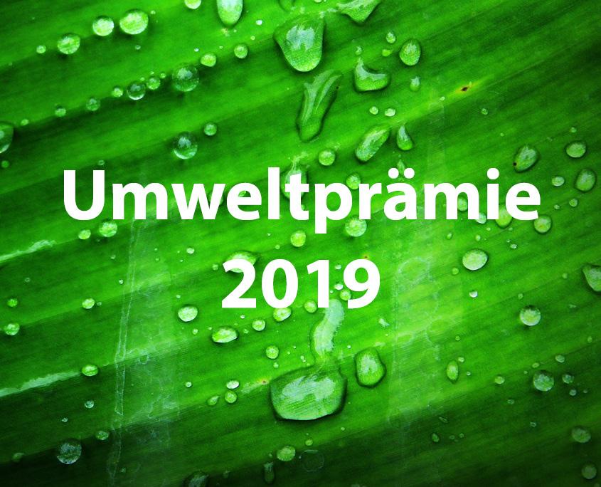Umweltprämie 2019 Galerie